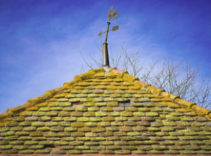 An old roof covered in moss that could only be properyl cleaned by experts in the moss removal experts if the owner wishes to leave no scratches or damage behind.