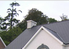 A picture of a roof cleaned by a Seattle roof cleaning company.
